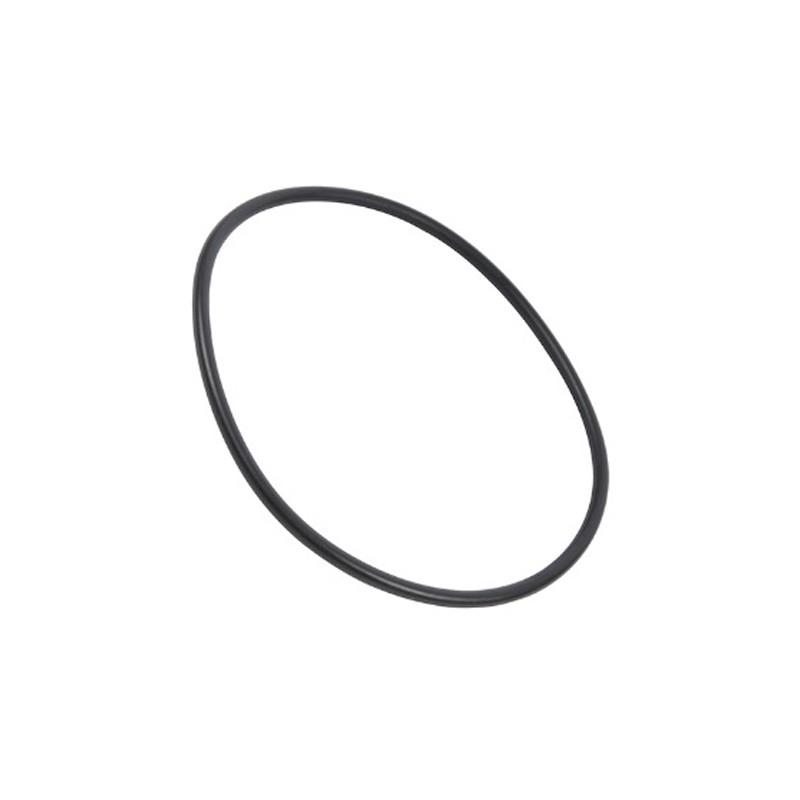 O-ring pozzetto